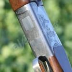 gun (43)