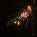 fireworks (19)
