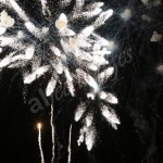 fireworks (28)