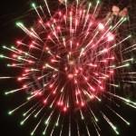 fireworks (7)